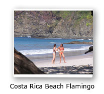 Costa Rica Flamingo Beach