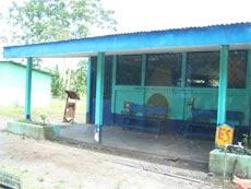 Costa Rica Primary School  Limon