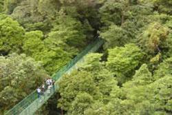 Trapp Family Lodge Monteverde 4
