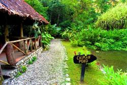Esquinas Rainforest Lodge 1
