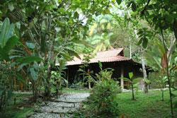 Esquinas Rainforest Lodge 2