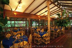 Pachira Lodge Tortuguero 4